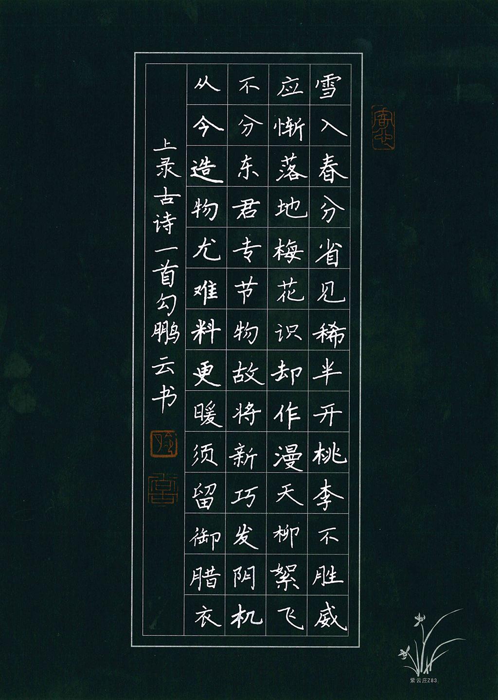 勾鹏云 小学高年级组一等奖
