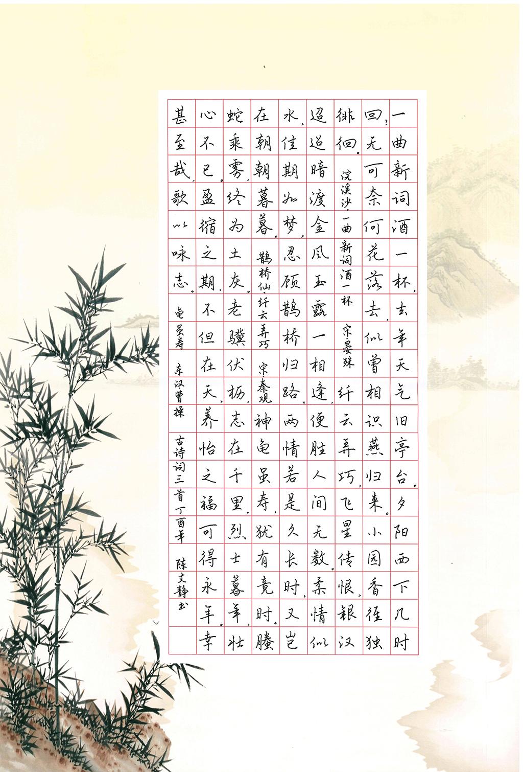 陈文静 中学组 三等奖